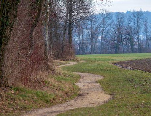 Put čišćena 74. dio- Zaustavljanje i odustajanje od puta duhovnog